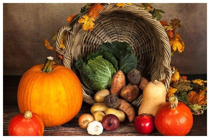 Makanan Yang Bisa Menjadi Beracun Jika Tidak di Olah Dengan Baik